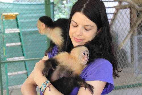 Wildlife Sanctuary Volunteer Program in Domincal, Costa Rica