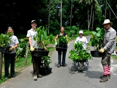 Wildlife conservation volunteering in Borneo