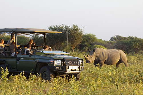 Safari Guide course, 12 month / FGASA