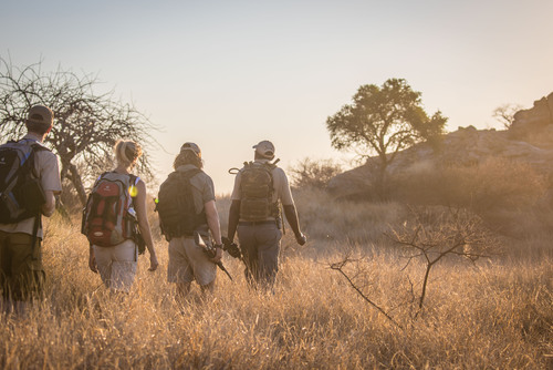 Field Guide Level 1 Course in Southern Africa