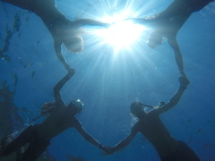Turtle Conservation & Marine Diving, Malaysia