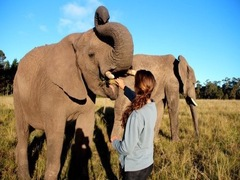 South Africa Tours, Gap Year & Backpacking Trips