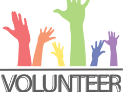 Volunteer in Madrid