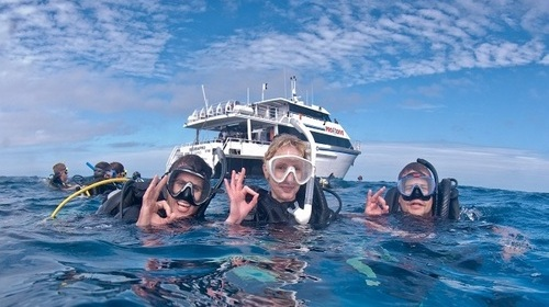 Scuba Diving in South America