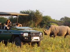 Safari Guide Training Courses