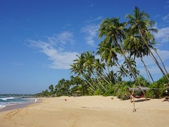 Yoga Retreats & Holidays in Sri Lanka
