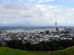 Internships in Auckland