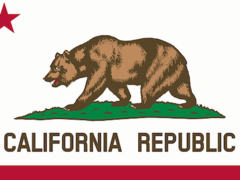 Volunteer in California