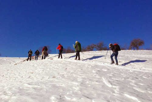 Transylvania Winter Walking & Snowshoe Tour