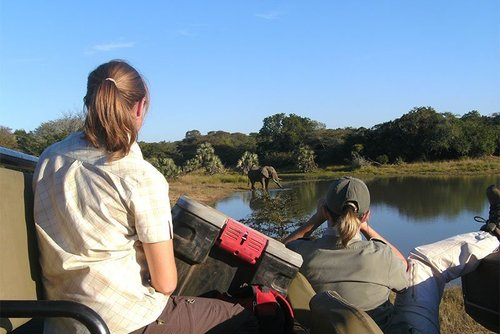 *NEW* Volunteer on a 'Big 5' safari reserve in South Africa