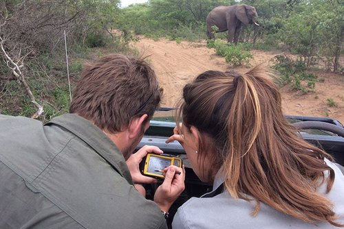 *NEW* Volunteer as a Wildlife Researcher in Africa