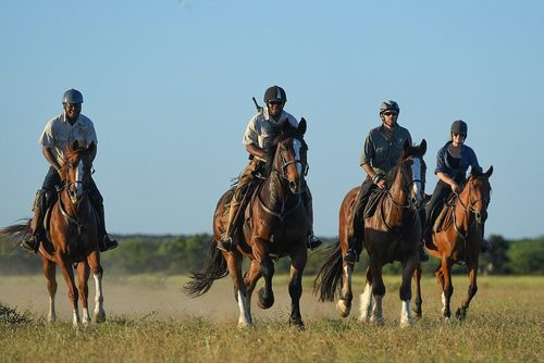 Horse Gallop Safari: Horseback Riding Vacation