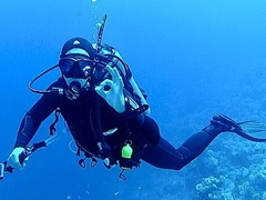 Scuba Diving in Croatia