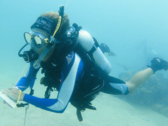 Marine Conservation Expedition in Fiji