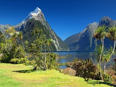 Top 10 Things to Do in New Zealand's South Island