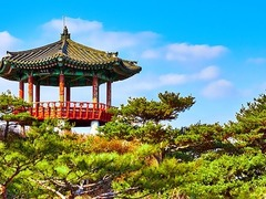 South Korea Travel, Backpacking & Gap Year Guide