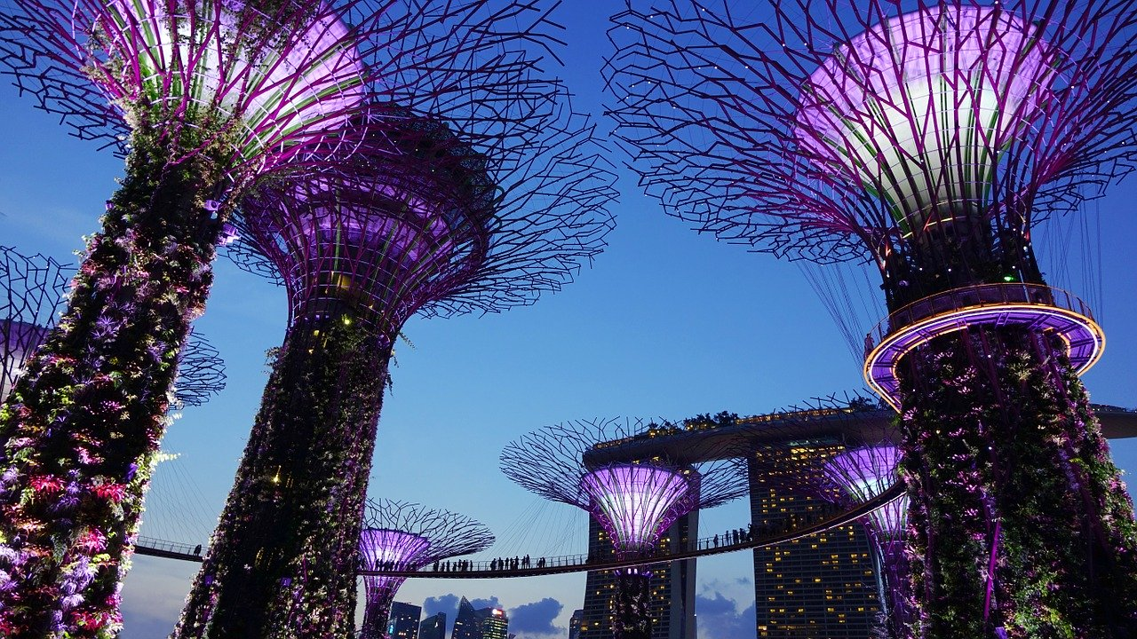 Best Places to Eat in Singapore