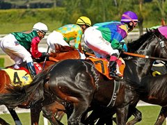 The Best Racecourses to Visit in the World