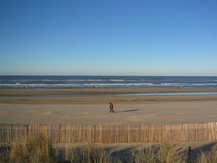 Amsterdam Best Attractions Nordwijk Beach