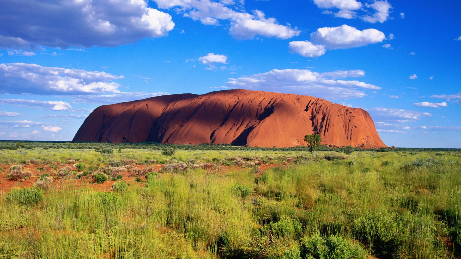 how to travel australia for a year