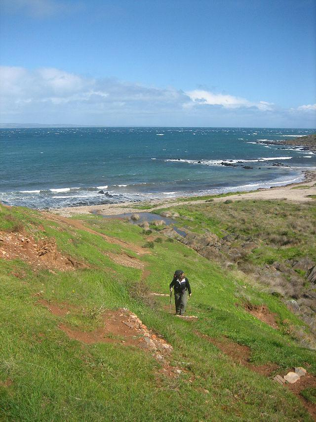 Hiking the Heysen trail