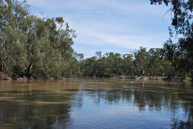 Rafting in Murray River