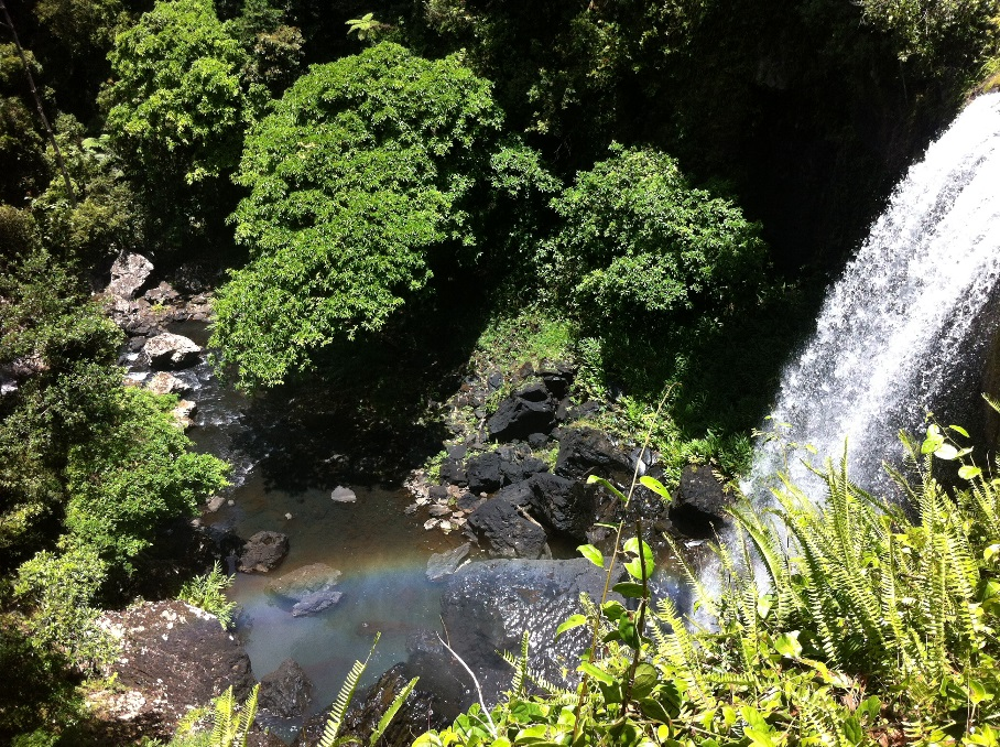 Waterfall Circuit in the Atherton Tablelands (100km south of Cairns, Queensland)