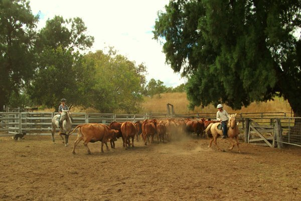 Farm and Outback Jobs in Australia