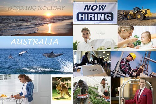 Types of Working Holiday Jobs in Australia