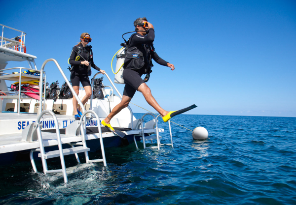Caribbean Diving: Scuba Diving Courses, Packages, Internships & Jobs