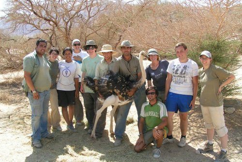 Wildlife and Conservation Volunteer Projects in Israel