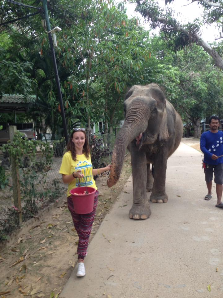 Reasons to do Camp Thailand