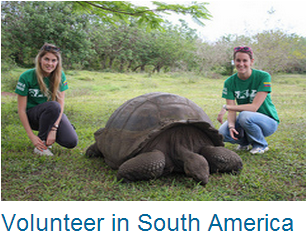 South America Volunteer