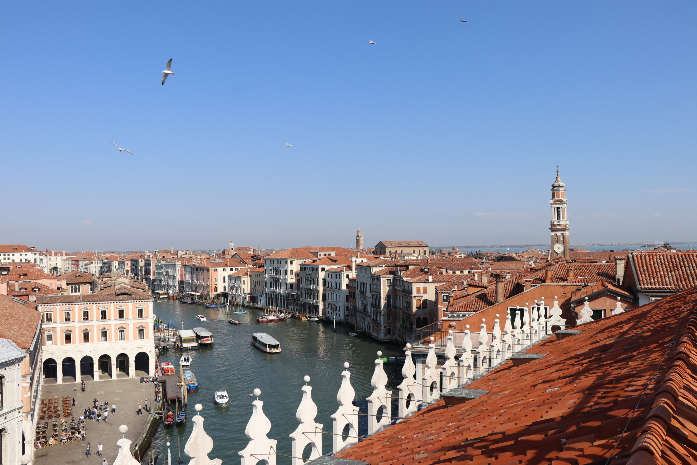 Venice Rooftop Views