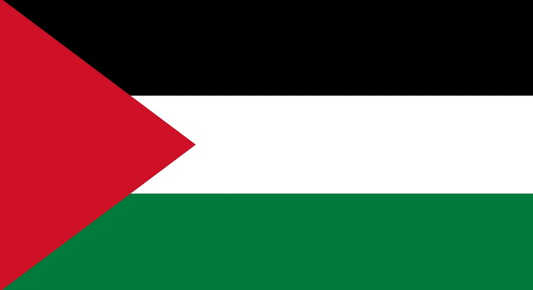Volunteer in Palestine