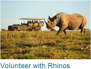 Volunteer Rhinos