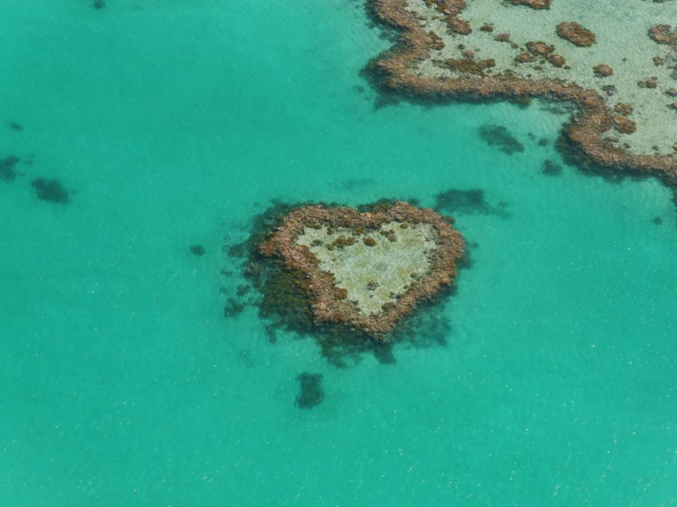 Whitsundays love heart coral reef